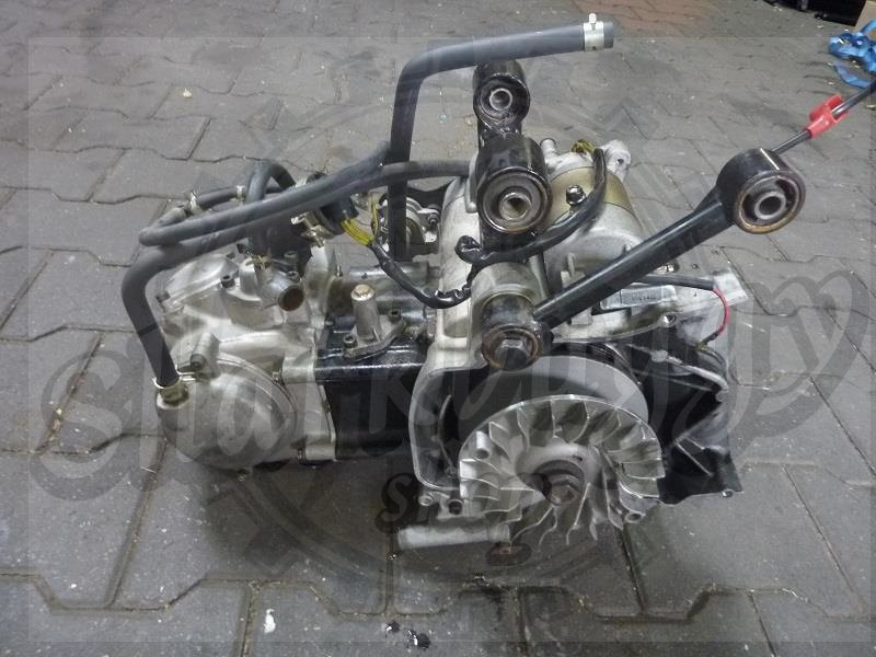 Used 300cc Engine Assy 173mm